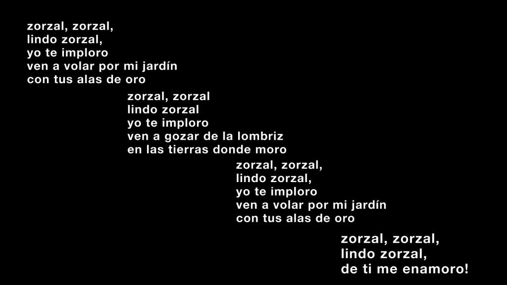 Zorzal Lyrics